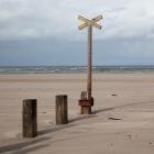 Strand15